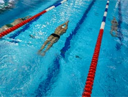2015 Swimming Carnival Results